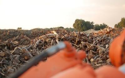 vendita legna per stufe