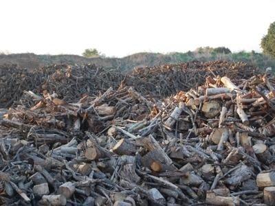 vendita legname privati aziende
