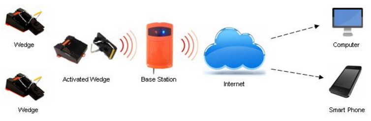 remote control monitoring service for pests