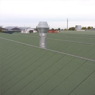 tetti focchi