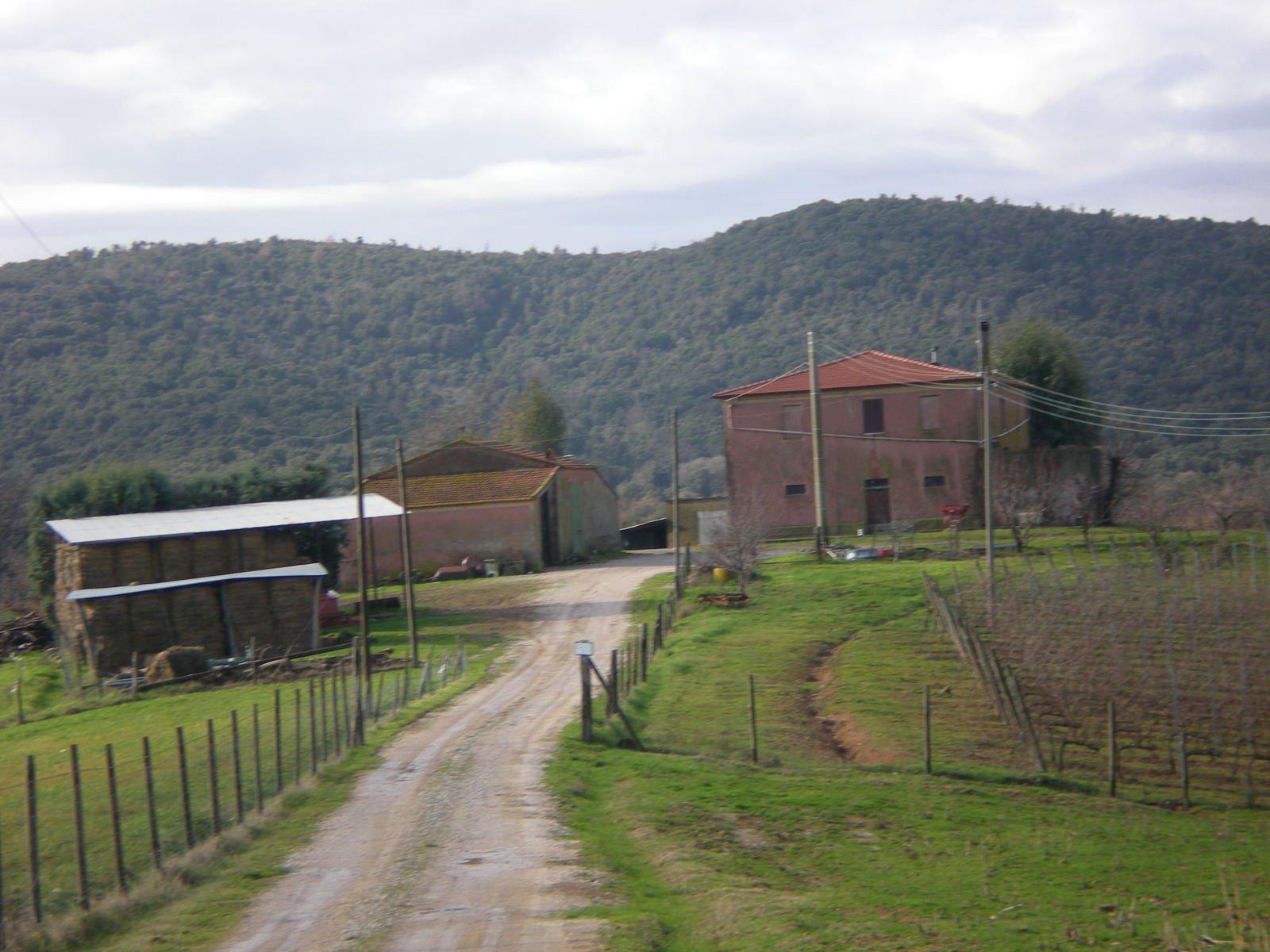 vista da distanza di tre case e delle colline