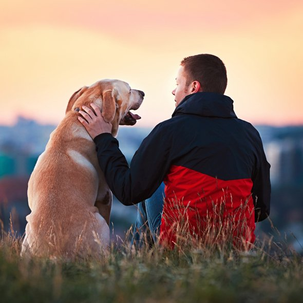 Owner with Golden Retriever watching the sunset