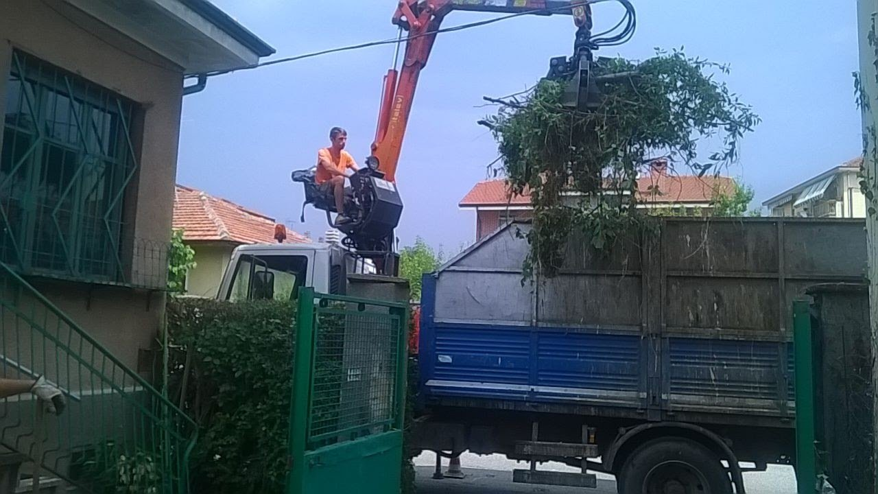 cestello per potatura alberi