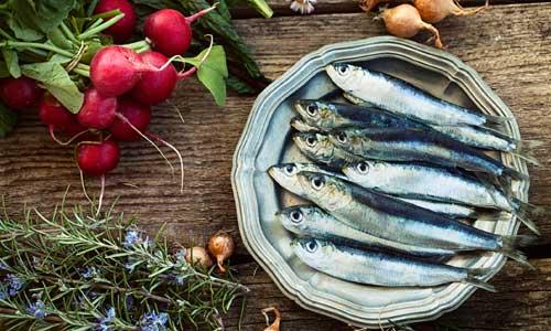 due tranci di salmone alla griglia