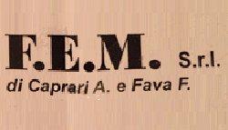 logo; Fem srl di Caprarri A. e Fava F.