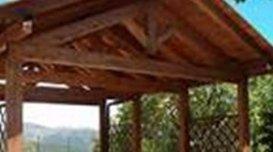 assemblaggio tetti legno