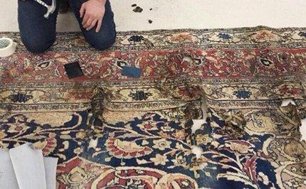 trattamento tappeti