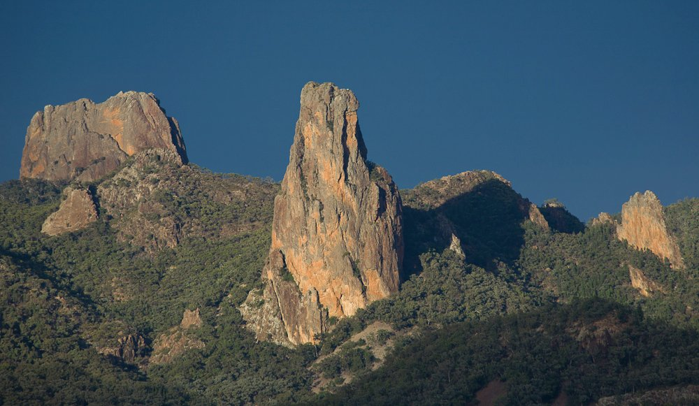 warrumbunglenp080400-117
