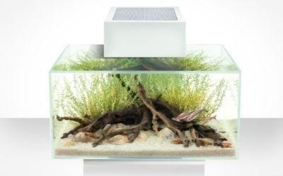 Vendita acquari genova l 39 acquario for Acquari in vendita