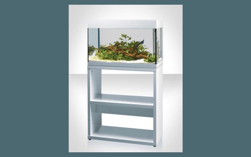 Mobili per acquario genova l 39 acquario for Mobili genova