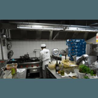 pizzerie con forno a legna, cene di lavoro, Firenze, antipasti di mare