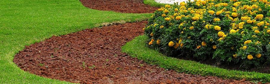 Budget Mix Soil