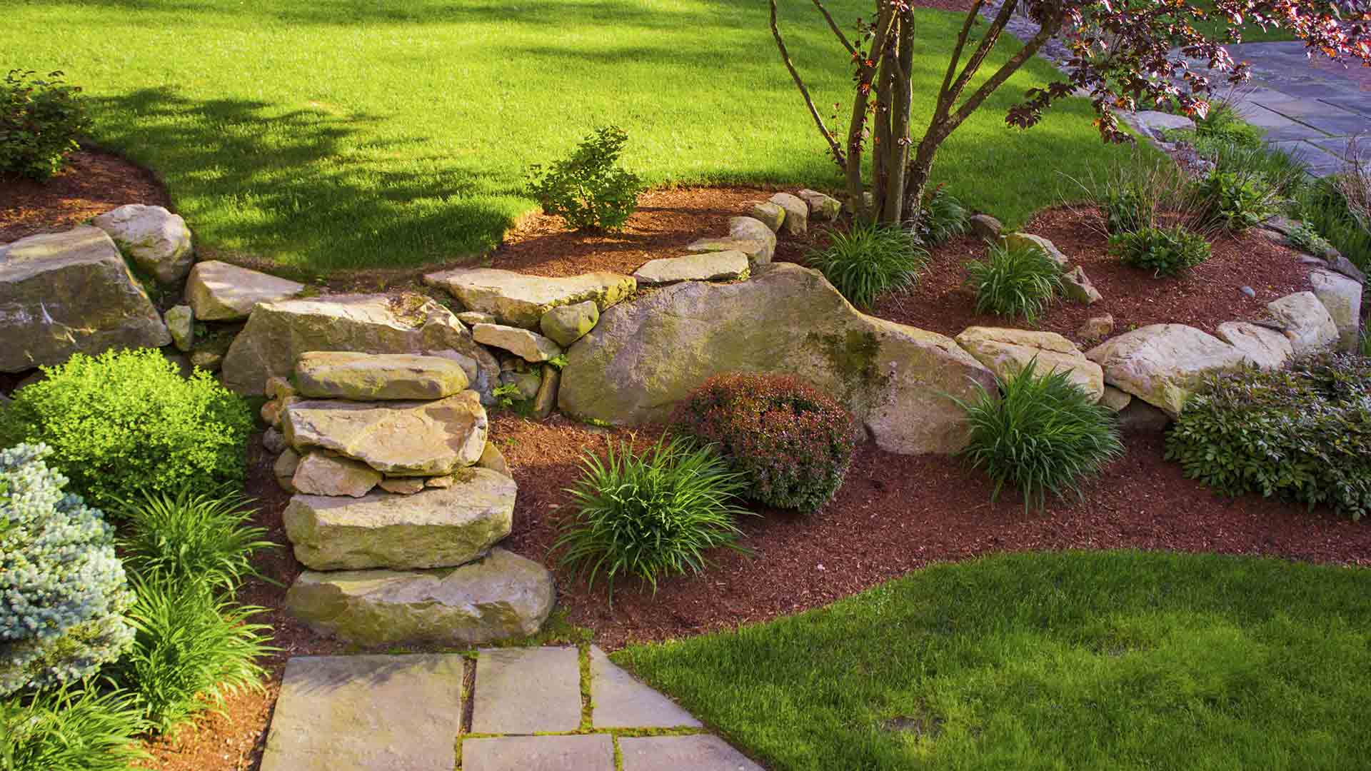 beautiful landscaped garden