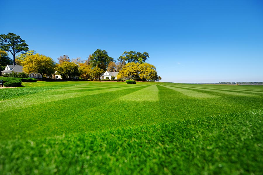 Beautiful green lawn with blue sky and a country house in the background