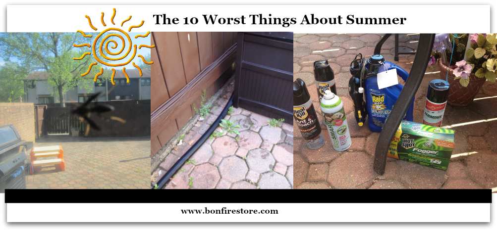 10 Worst Things About Summer