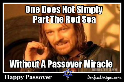 Happy Passover Miracles