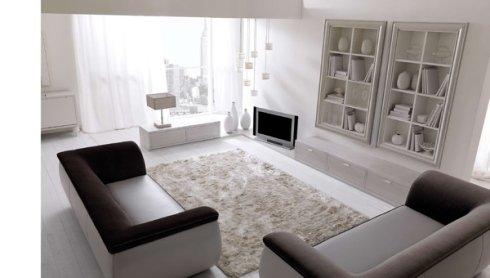 divani in pelle marrone, tappeto begie, libreria a muro