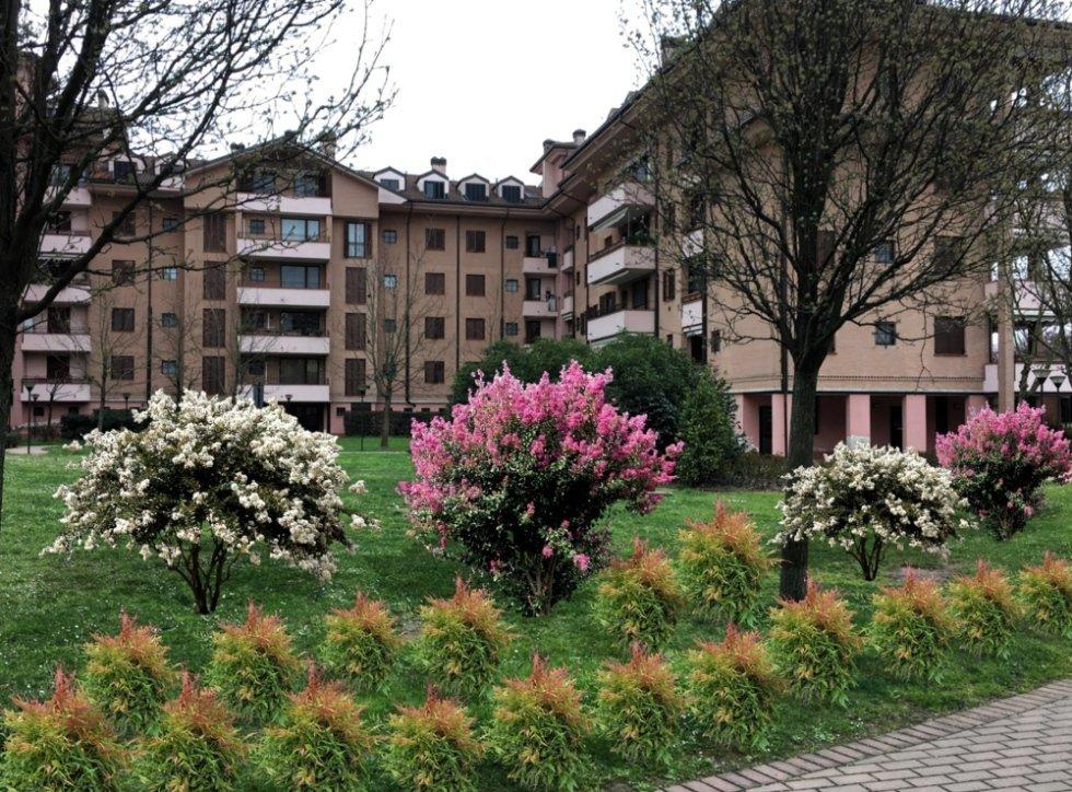 vista frontale di case con giardino