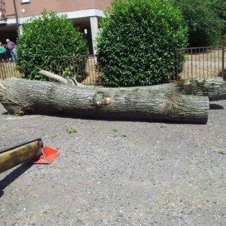 pezzo di legno