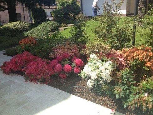 vista laterale di giardino con fiori