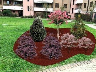 giardino con alberelli colorati