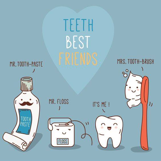 TEETH BEST FRIENDS TOOTHBRUSH TOOTHPASTE FLOSS FAMILY DENTAL CENTRES SUNDAY FUNNIES