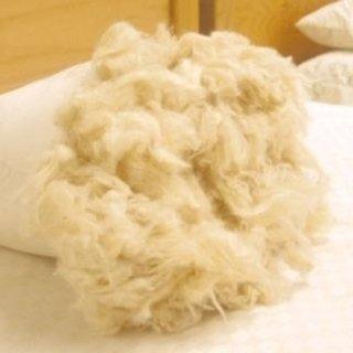 Kapok fibre vegetali