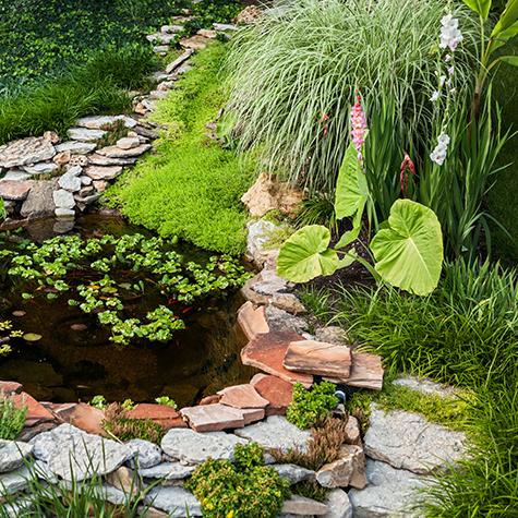 Laghetto fai da te in giardino come crearlo e decorarlo for Laghetto giardino fai da te