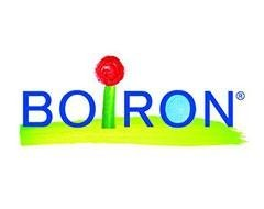 http://www.boiron.it