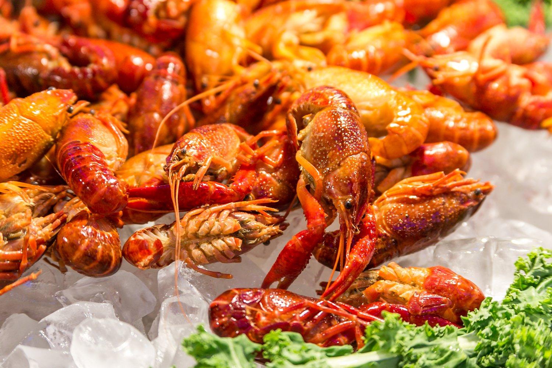 Hokkaido Chinese & Japanese buffet seafood close up