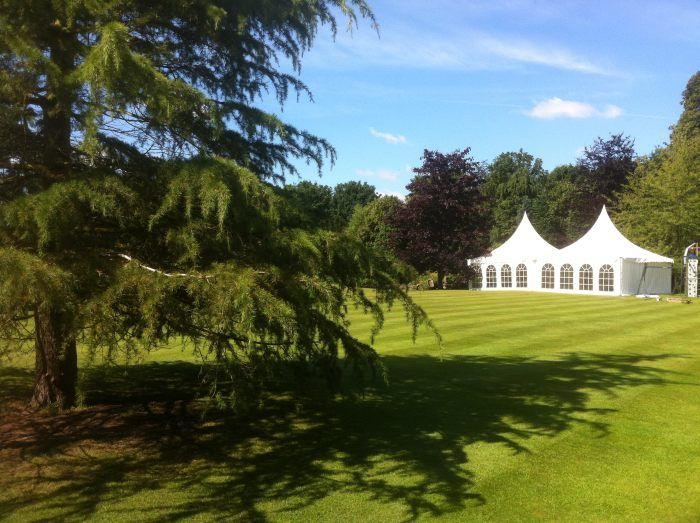 Oriental marquee