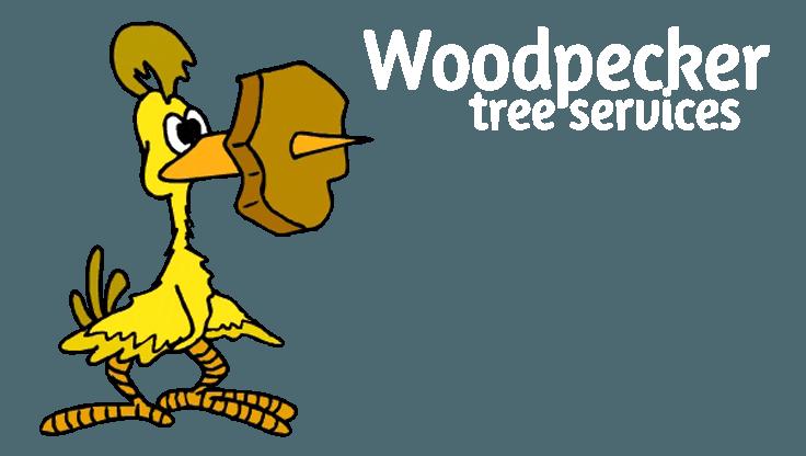 woodpecker tree services business logo