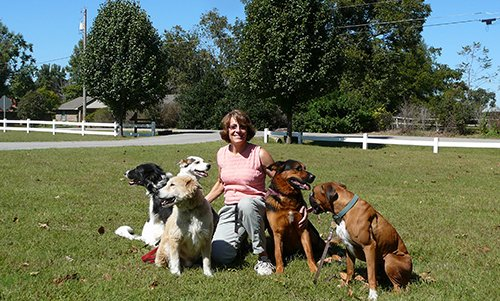 Instructor with dogs at our dog training school near Jenks, OK