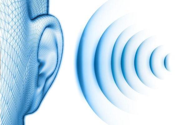 Progettazione e misurazioni acustiche Agrochimica Pontina Aprilia