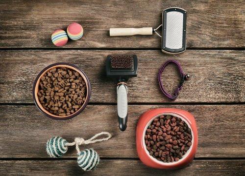 Ciotole con cibo e accessori per animali