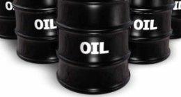 commercio olio