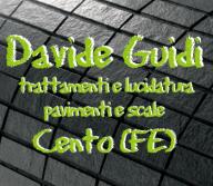 DAVIDE GUIDI