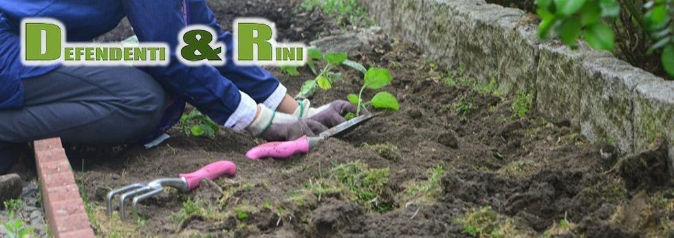 Defendenti e Rini - attrezzi per il giardinaggio