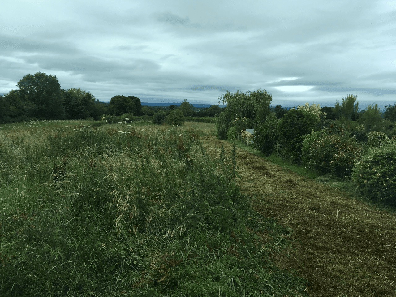 Paddock Creation And Paddock Maintenance In Herefordshire