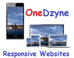 OneDzyne responsive websites for Small Business