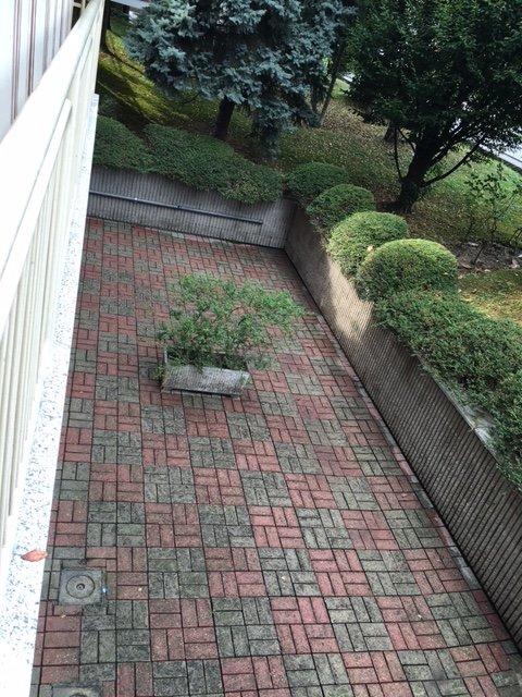 giardino pulito