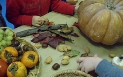 zucche e frutti di autunno