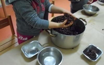 preparazione vaschette