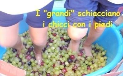 schiacciare uva con i piedi