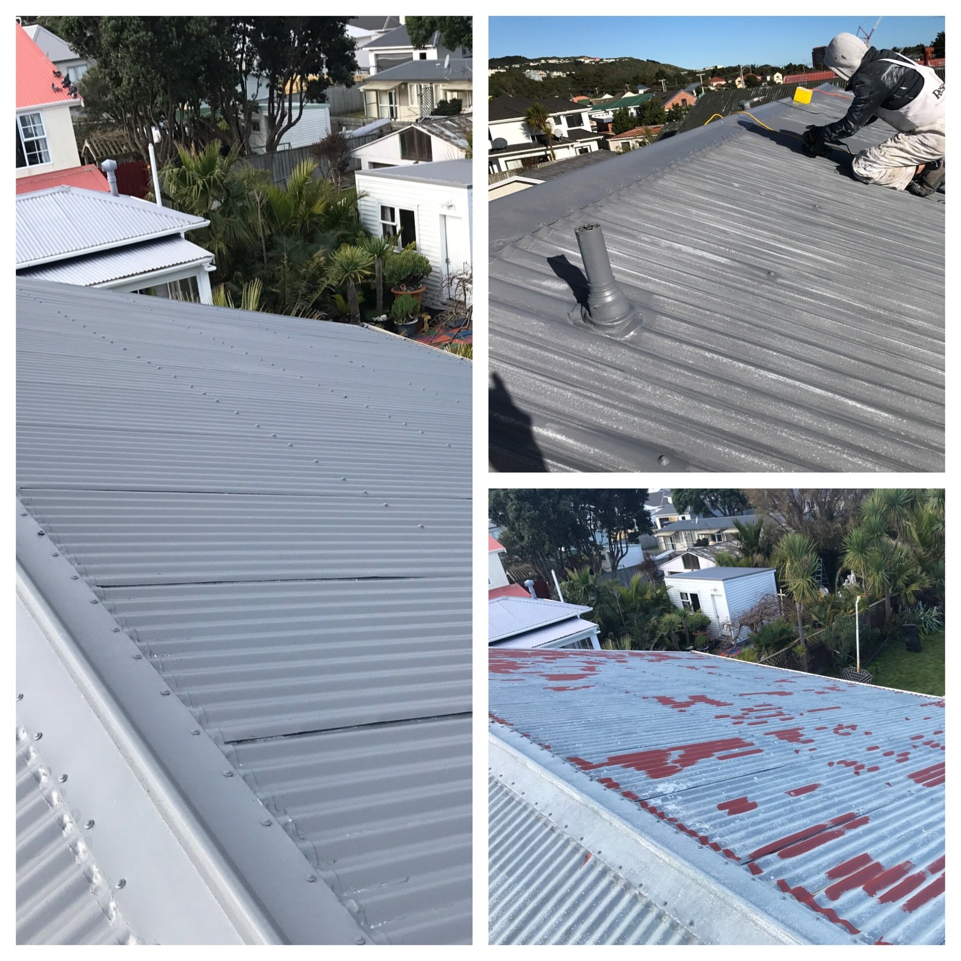 Roof Painting Wellington Protect Your Roof Surface Qlp
