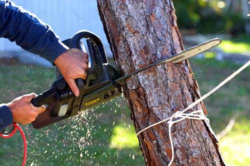 Equipment for tree cutting service in Eatonton, GA