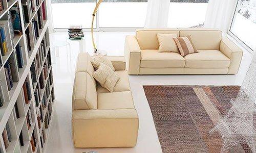 Una sala con due divani di tre posti di color beige, una libreria con dei libri e un tappeto in centro