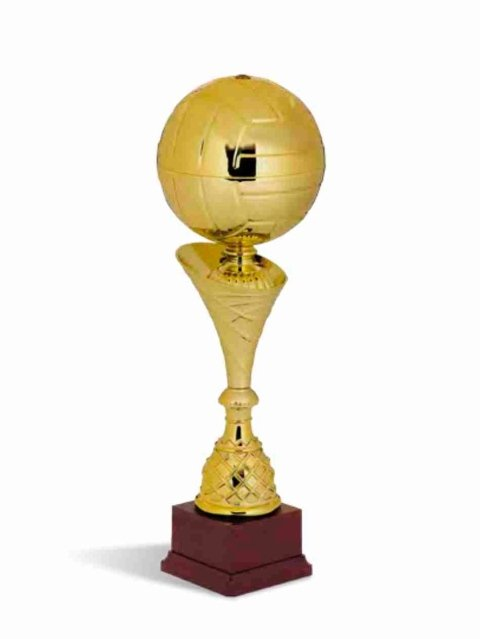 Trofei per premiazioni sportive