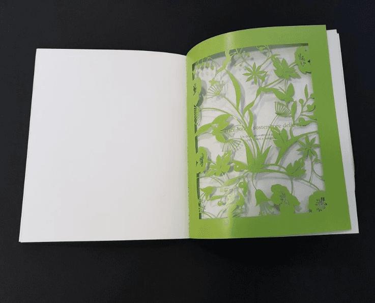 esempi di brochure-esseb-scandicci
