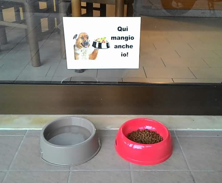 Ciotola per acqua e cibo per cani all'ingresso della pizzeria